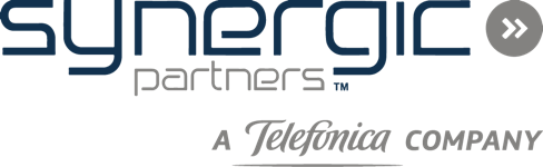 Synergic Partners