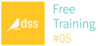 DSS Free Training - How to use SQL in DSS